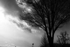 311_photo01
