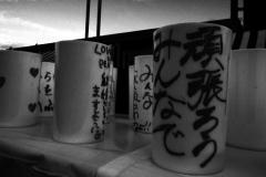 311_photo15