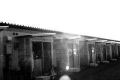 311_photo34